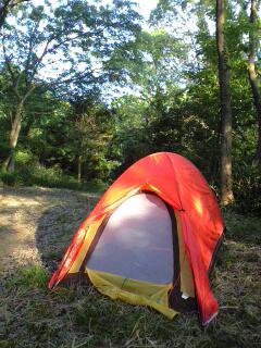 本日のテント